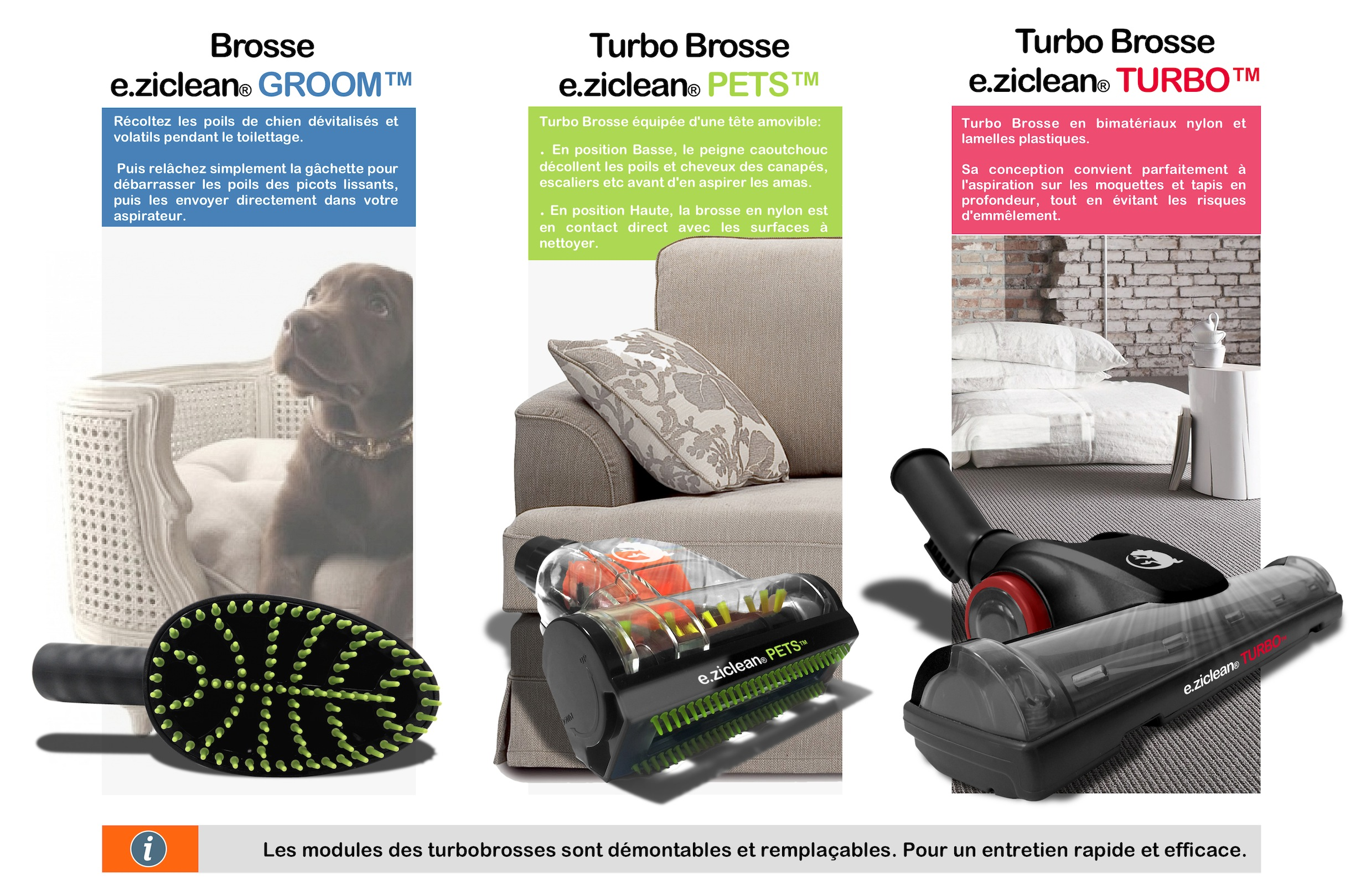 Aspirateur Performants Poils Animaux