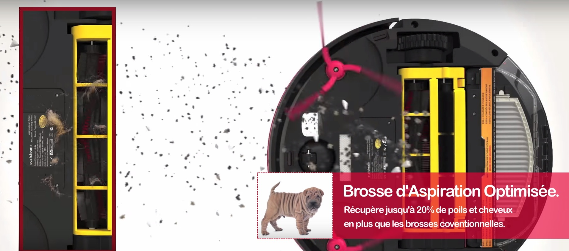Robot aspirateur pools animaux efficacy